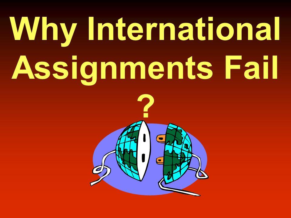 too big to fail essay explanation