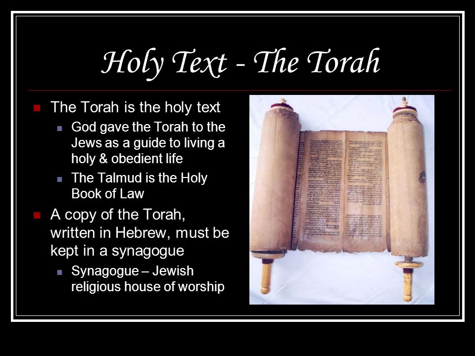 Holy Text - The Torah The Torah is the holy text