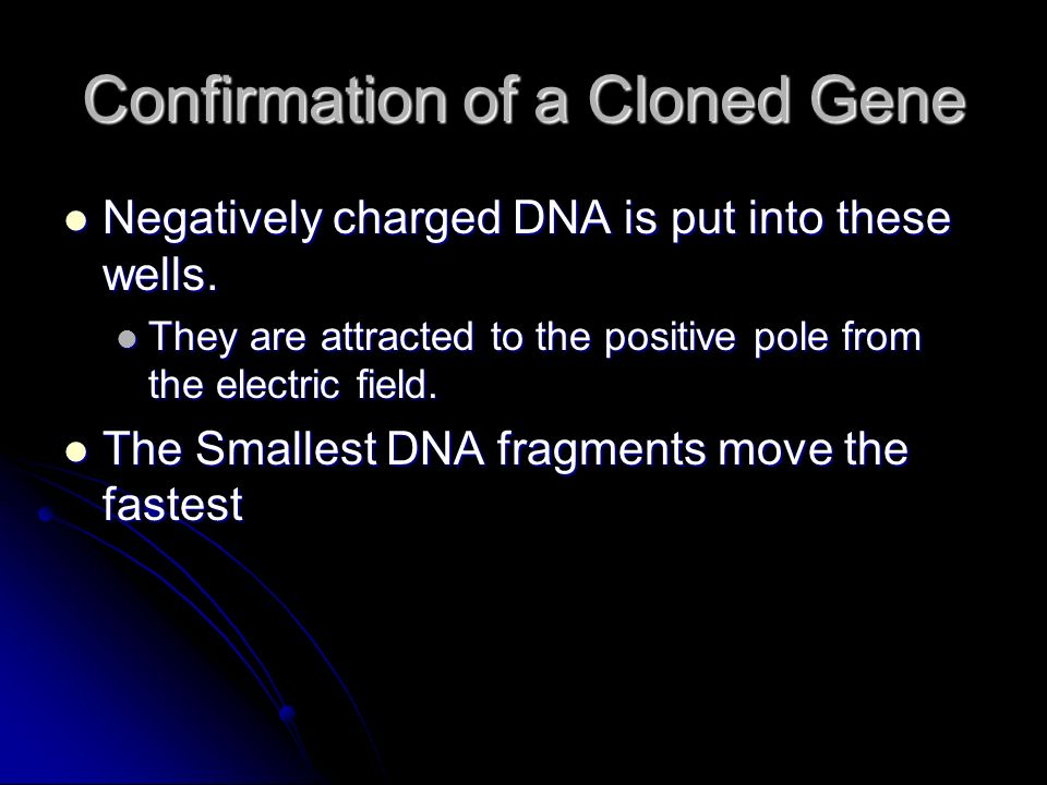 Confirmation of a Cloned Gene
