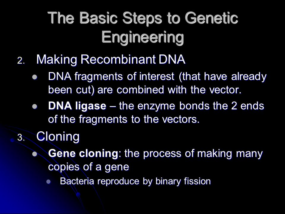 The Basic Steps to Genetic Engineering