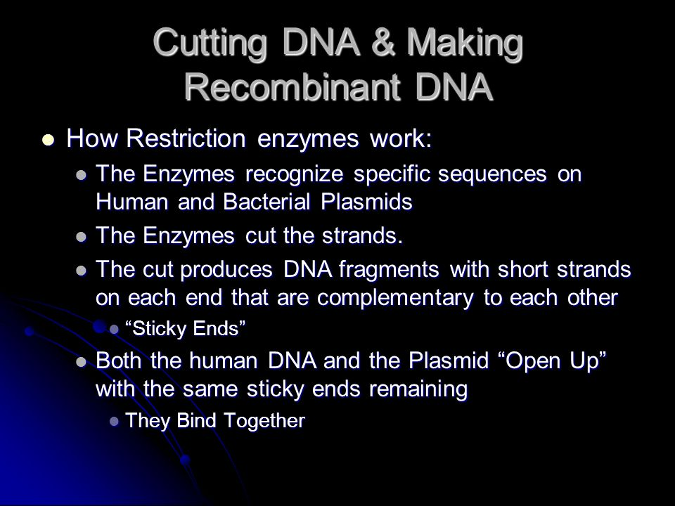 Cutting DNA & Making Recombinant DNA