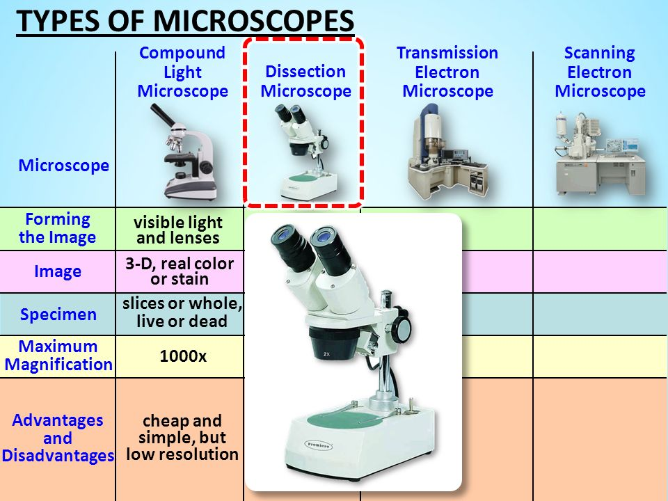 different types of microscopes There are different types of microscopes are exist:- 1 optical microscopes 2 dissecting microscopes 3 inverted microscopes 4 petographic microscopes 5 pocket microscope 6 scanning electron microscope (sem) 7 transmission electron microscope (tem.