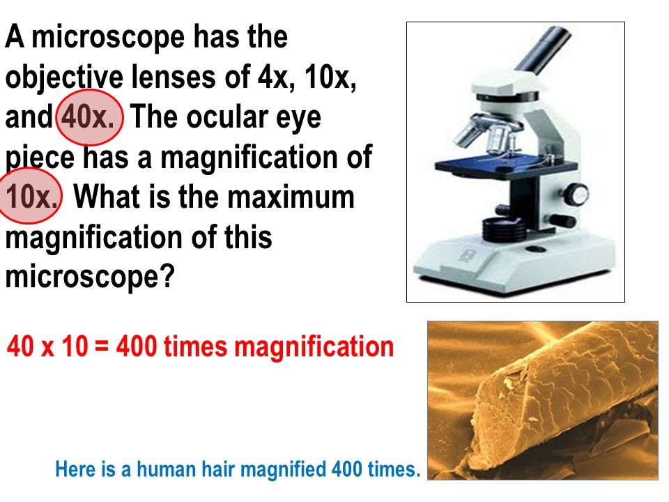 40 x 10 = 400 times magnification