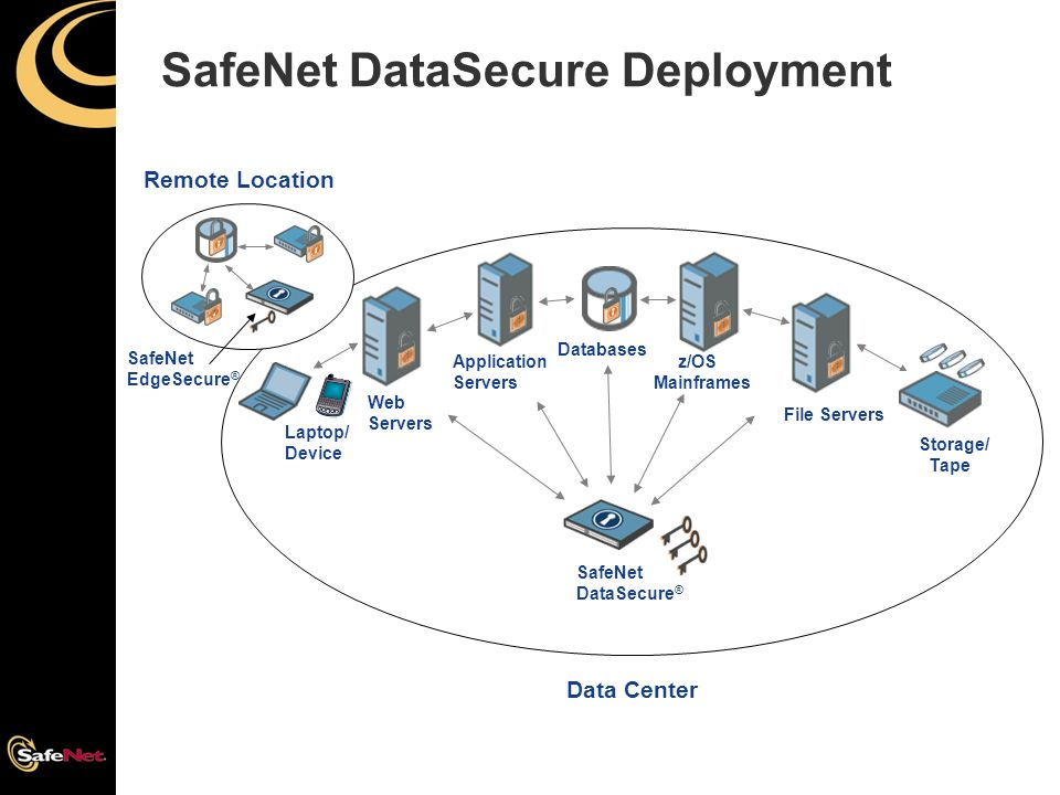 SafeNet Protects Data at Rest - ppt video online download
