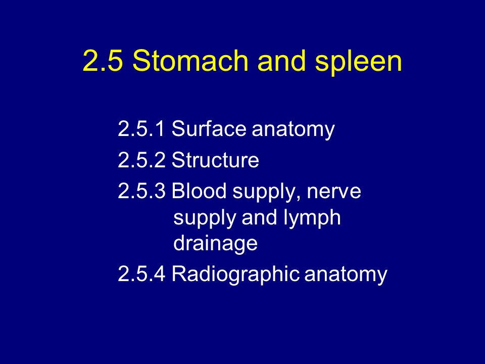2.3 Peritoneal cavity 2.4 Liver and gallbladder 2.5 Stomach and ...