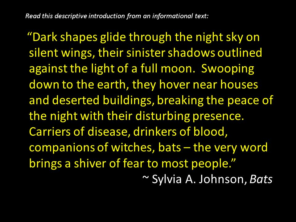 descriptive essay night sky