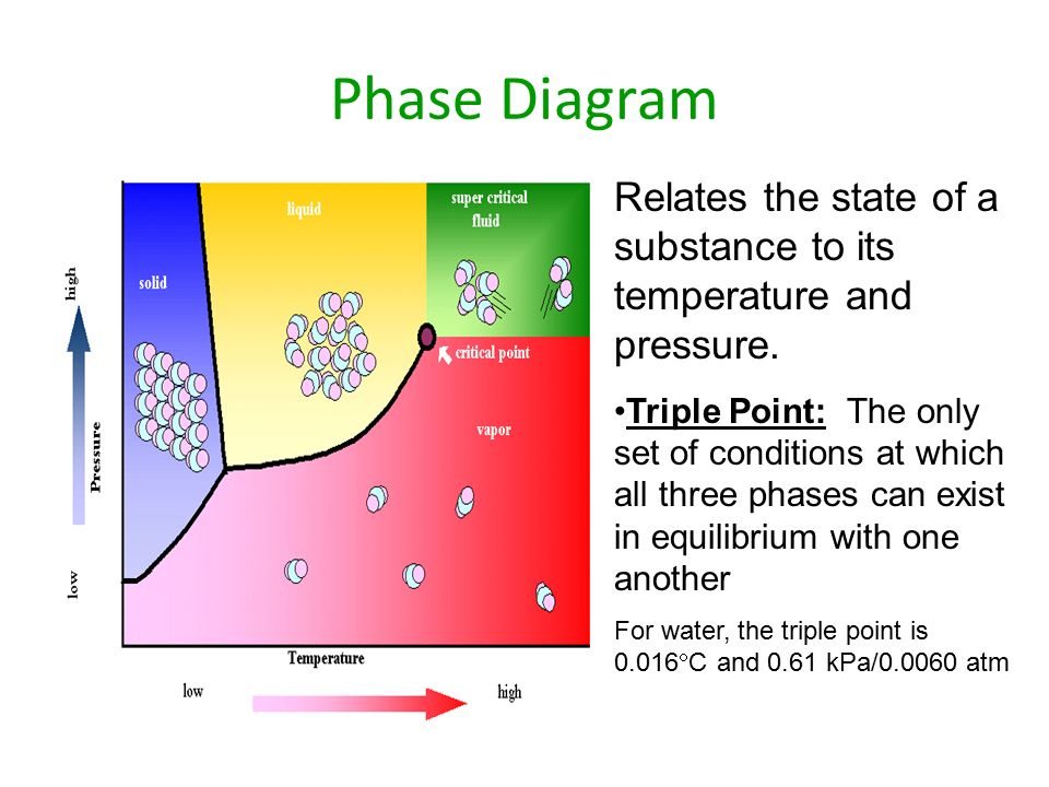 Phase Diagram Relates the state of a substance to its temperature and pressure.