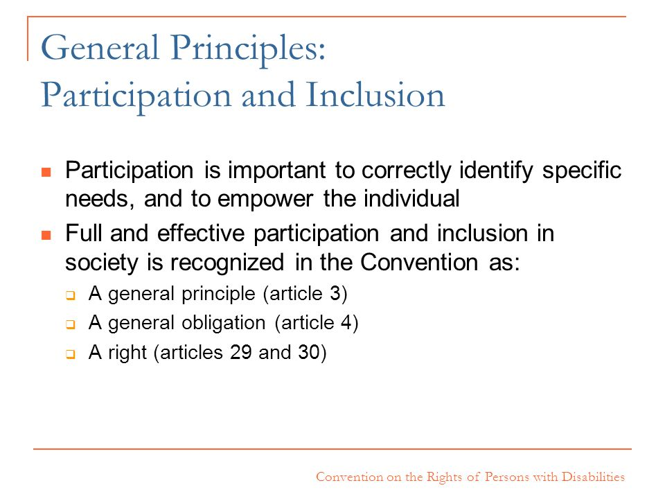 General Principles: Participation and Inclusion