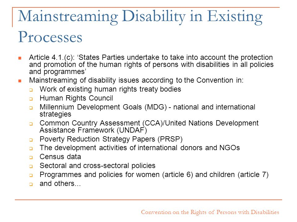 Mainstreaming Disability in Existing Processes