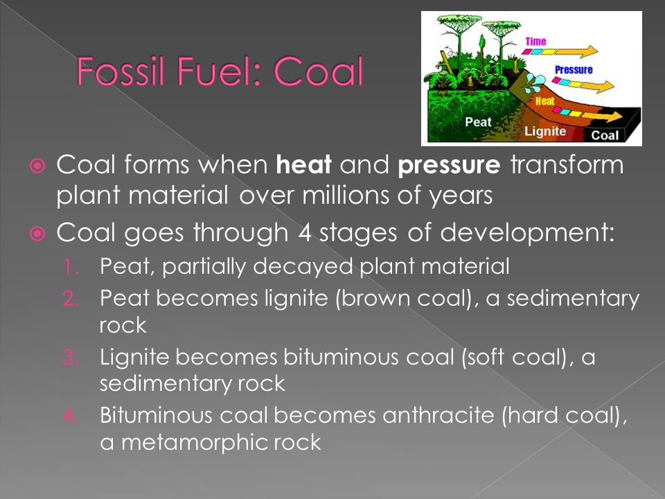 Fossil Fuel: Coal Coal forms when heat and pressure transform plant material over millions of years.