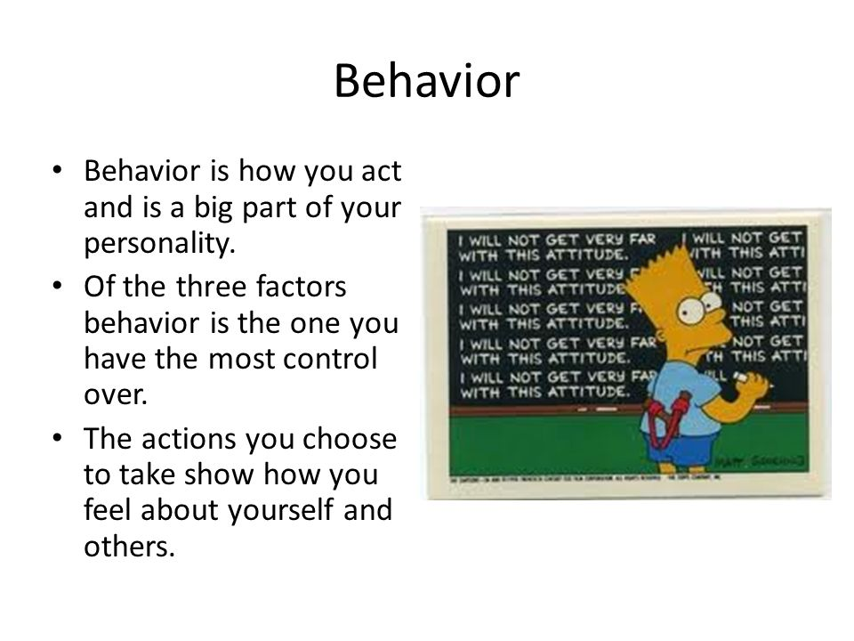 Behavior Behavior is how you act and is a big part of your personality. Of the three factors behavior is the one you have the most control over.