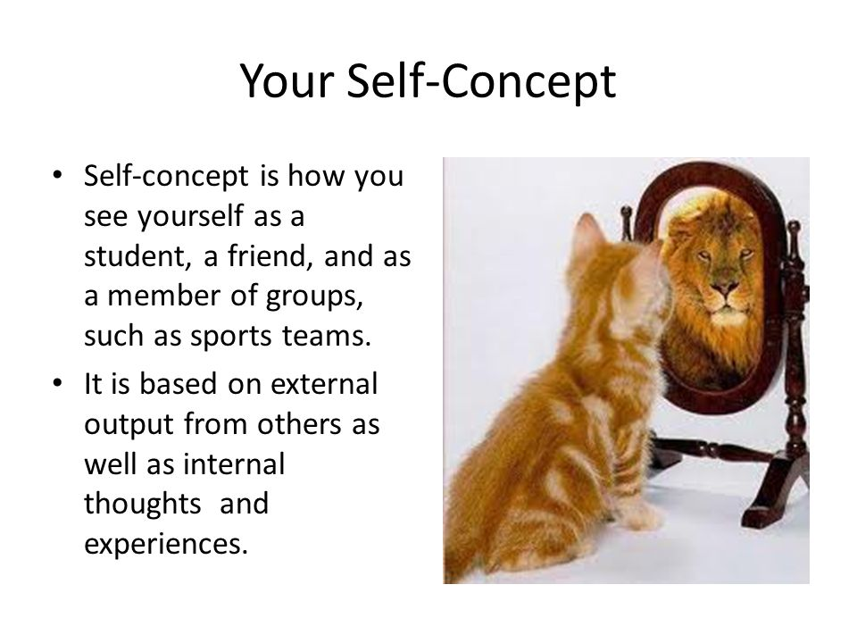 Your Self-Concept Self-concept is how you see yourself as a student, a friend, and as a member of groups, such as sports teams.