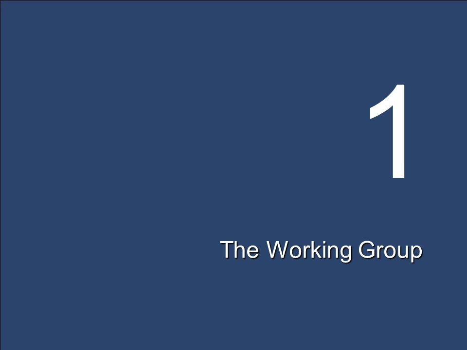 1 The Working Group