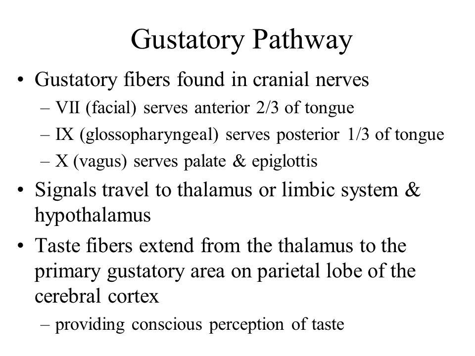 Gustatory Pathway Gustatory fibers found in cranial nerves