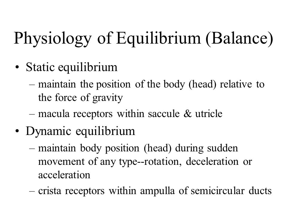 Physiology of Equilibrium (Balance)