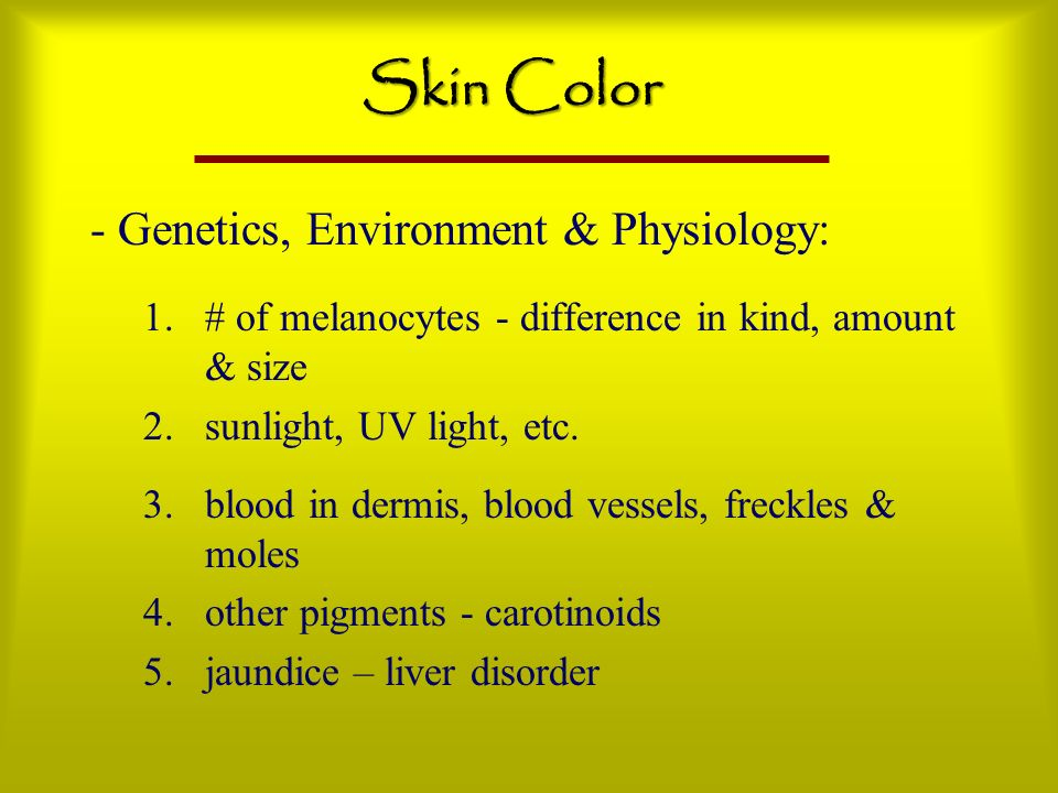 Skin Color - Genetics, Environment & Physiology: