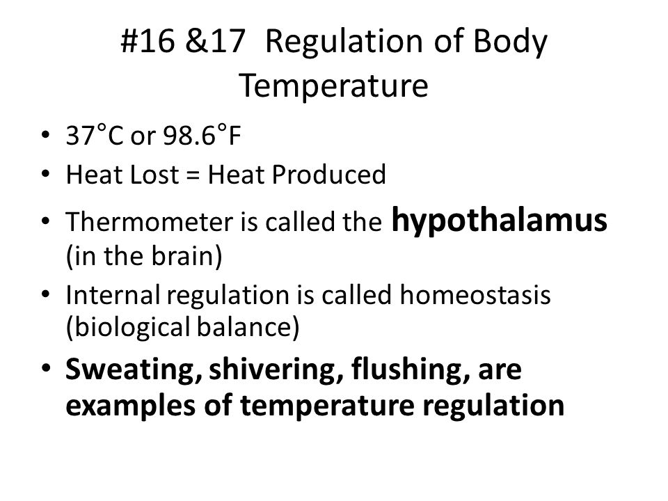 #16 &17 Regulation of Body Temperature