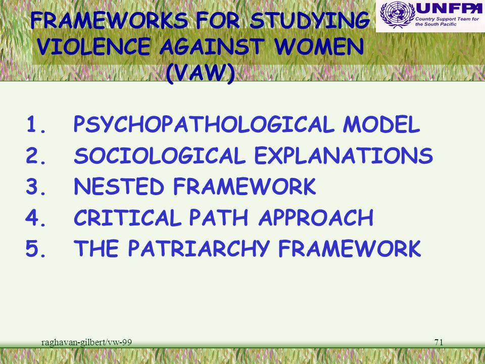 FRAMEWORKS FOR STUDYING VIOLENCE AGAINST WOMEN (VAW)