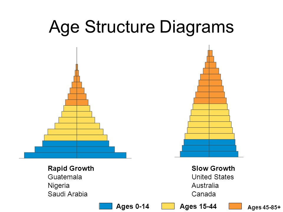 Age Structure Diagram Australia Car Wiring Diagrams Explained