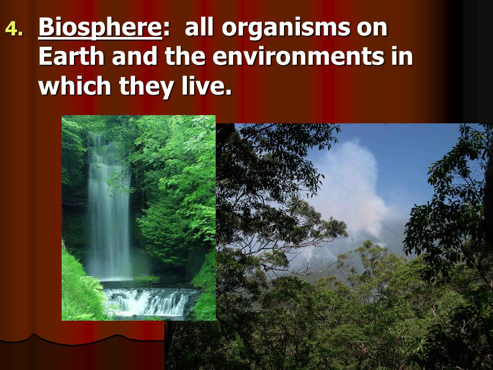 Biosphere: all organisms on Earth and the environments in which they live.