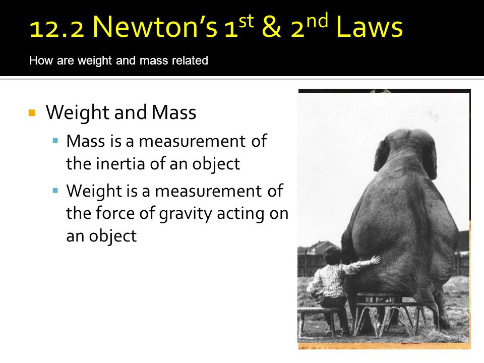 12.2 Newton's 1st & 2nd Laws Weight and Mass