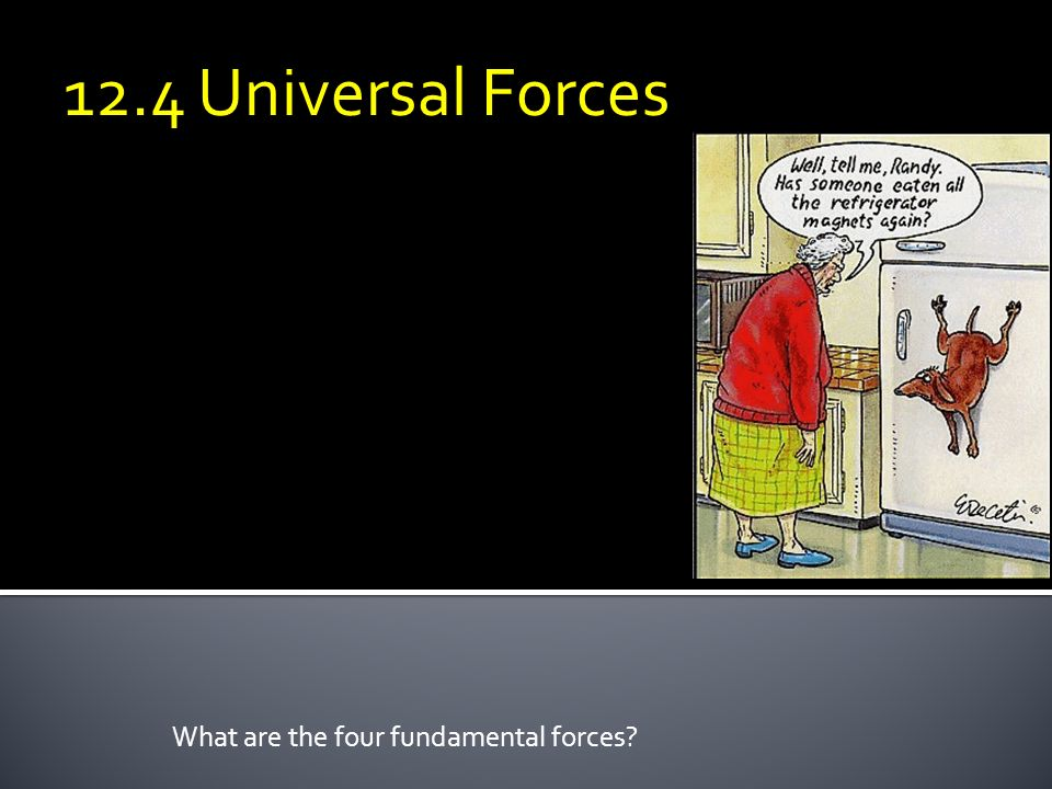 What are the four fundamental forces