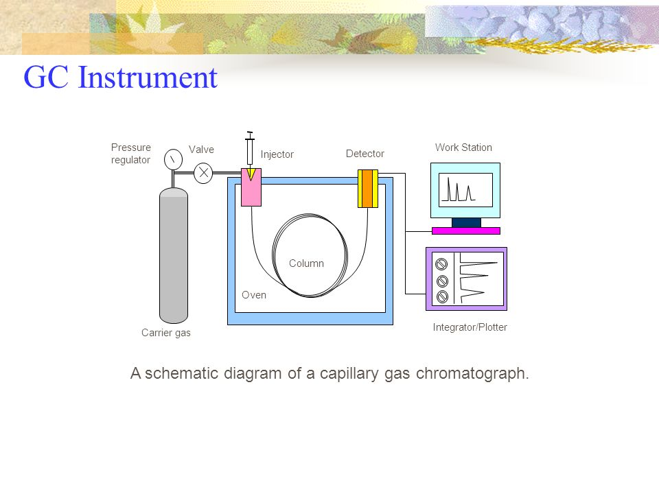 Gas Chromatography (GC) - ppt download on