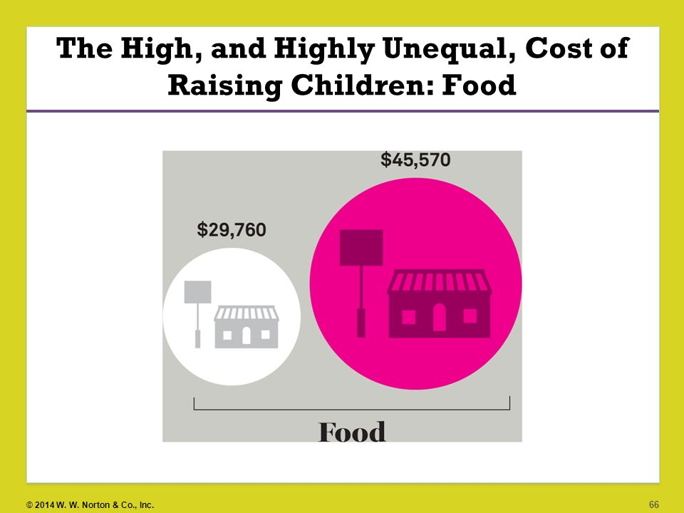 The High, and Highly Unequal, Cost of Raising Children: Food
