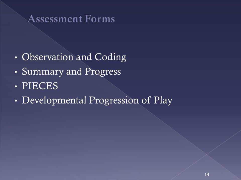 Assessment Forms Observation and Coding Summary and Progress PIECES