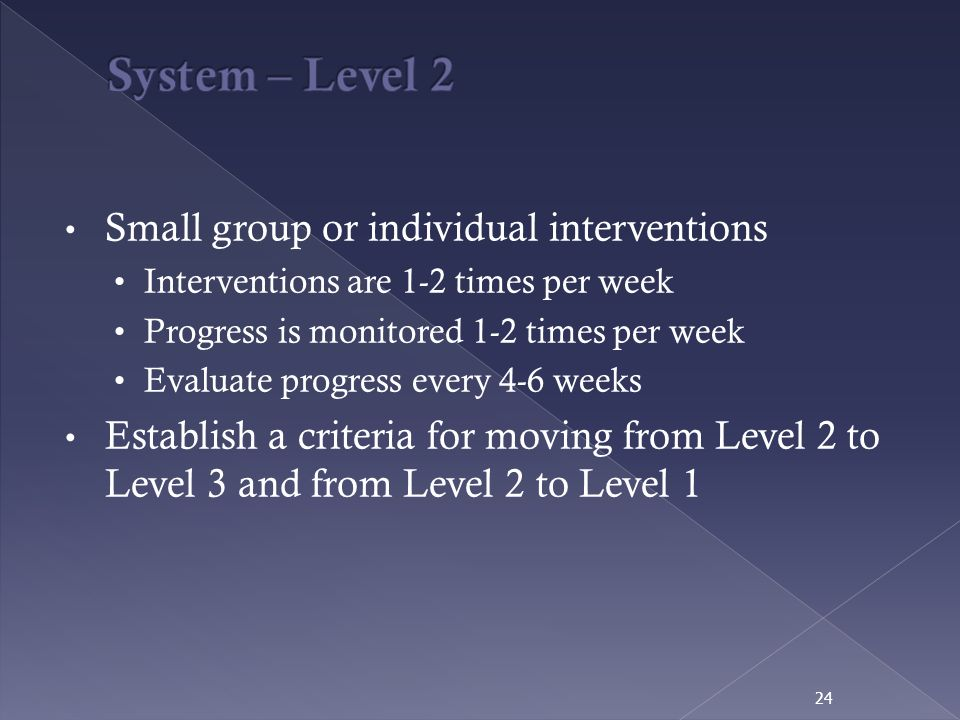 System – Level 2 Small group or individual interventions