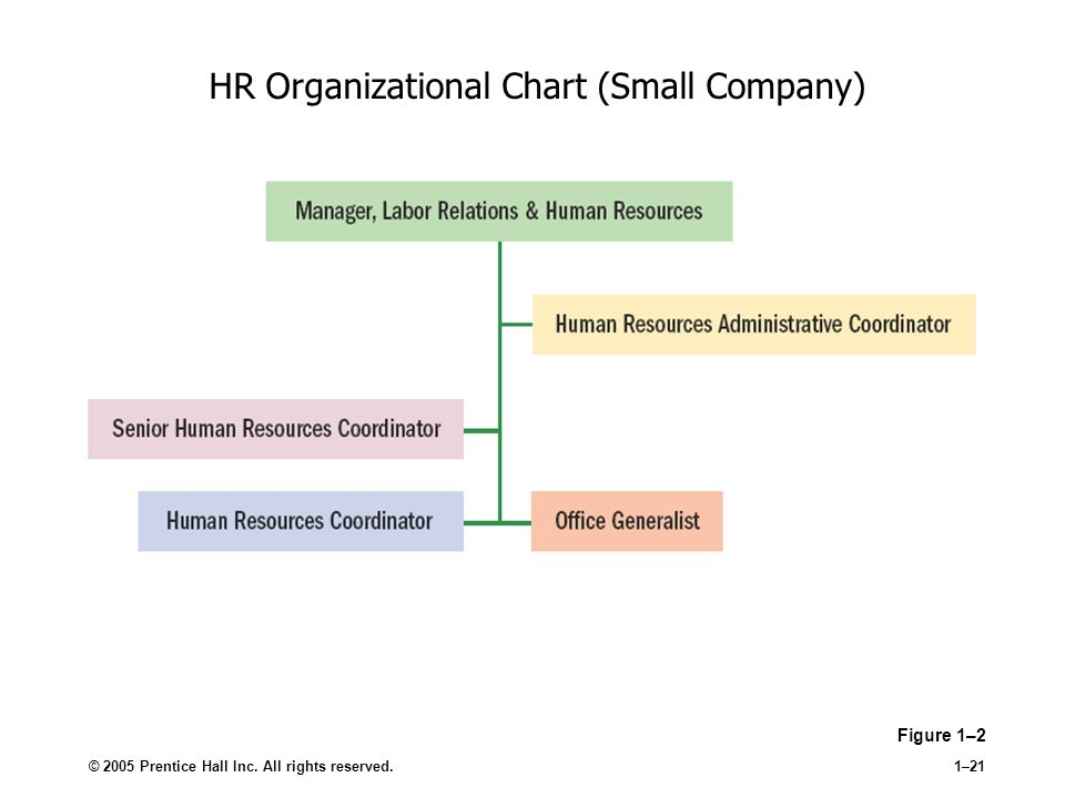 Human Resource Management - ppt video online download