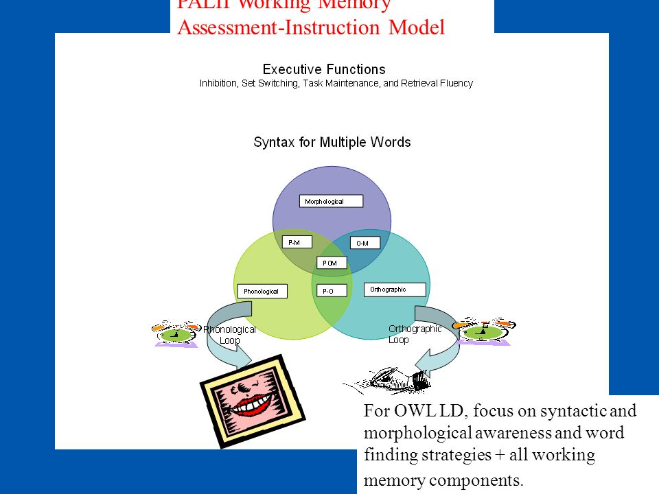 PALII Working Memory Assessment-Instruction Model