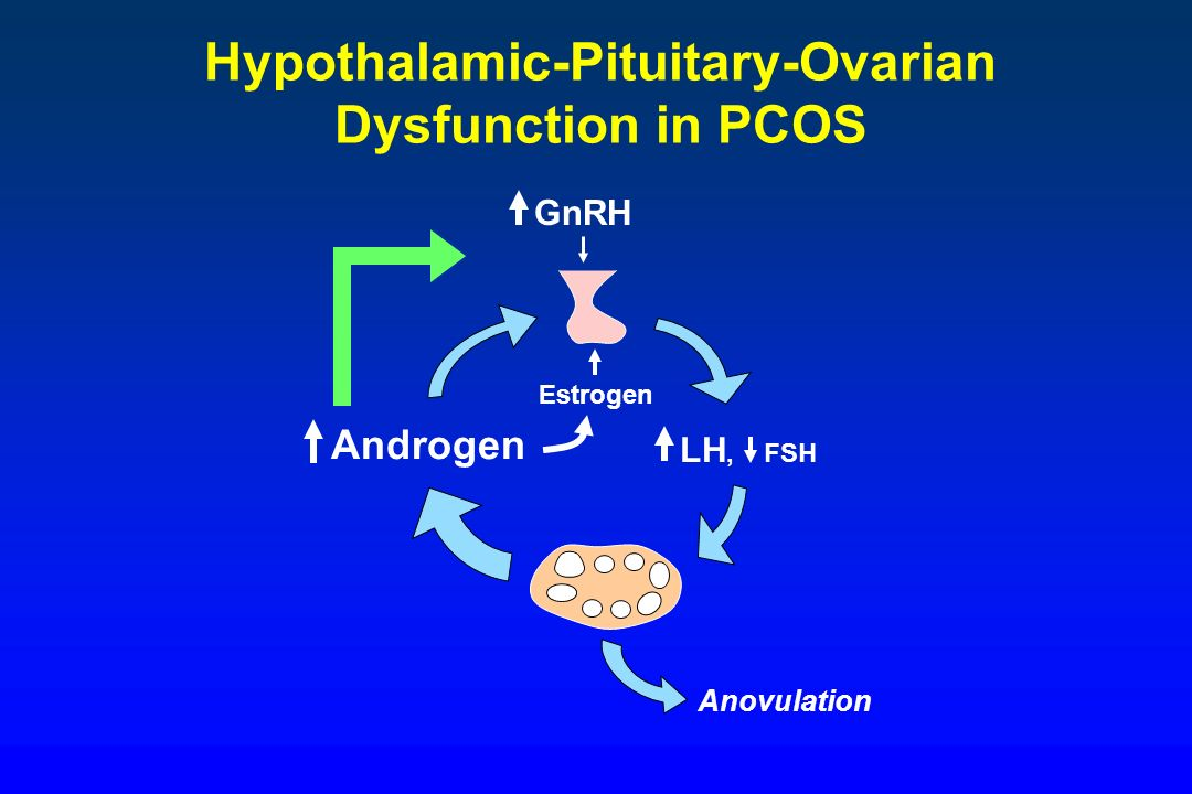 Hypothalamic-Pituitary-Ovarian
