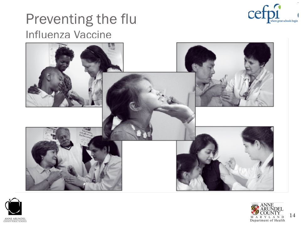 Preventing the flu Influenza Vaccine
