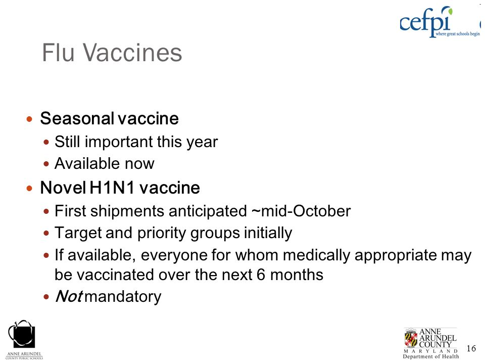 Flu Vaccines Seasonal vaccine Novel H1N1 vaccine
