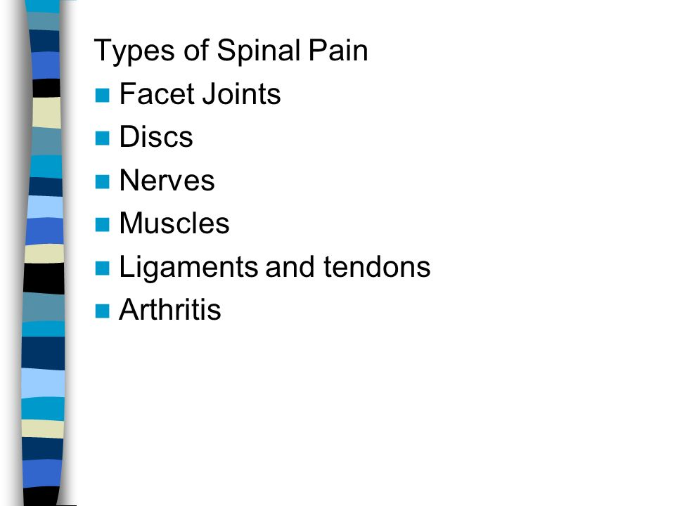 Types of Spinal Pain Facet Joints Discs Nerves Muscles Ligaments and tendons Arthritis
