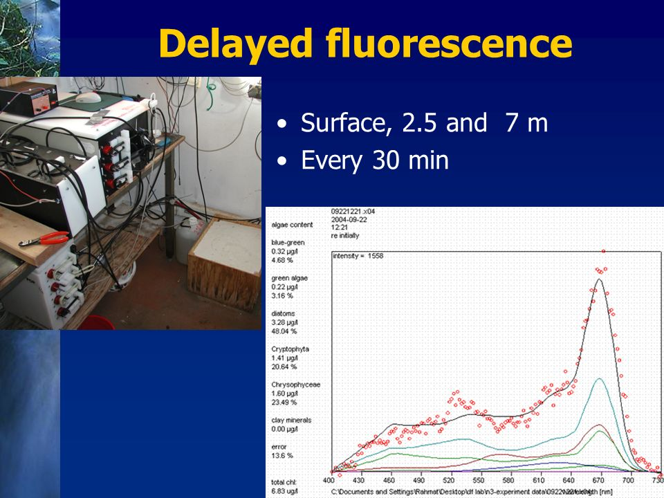 Delayed fluorescence Surface, 2.5 and 7 m Every 30 min