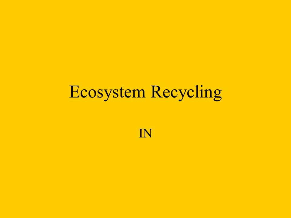 Ecosystem Recycling IN
