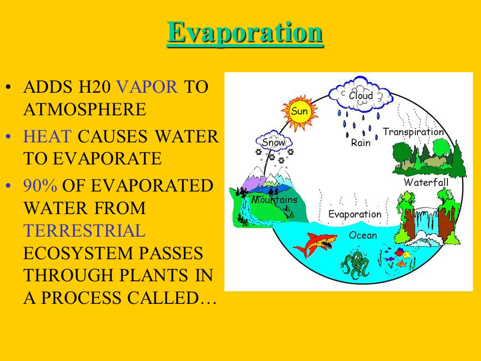Evaporation ADDS H20 VAPOR TO ATMOSPHERE