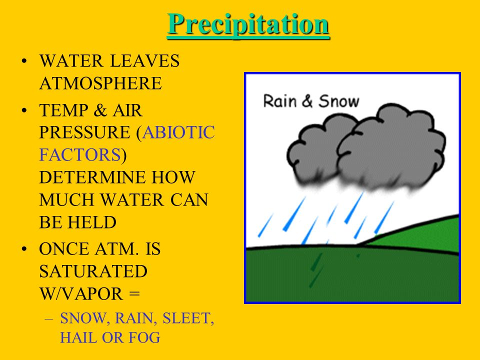 Precipitation WATER LEAVES ATMOSPHERE