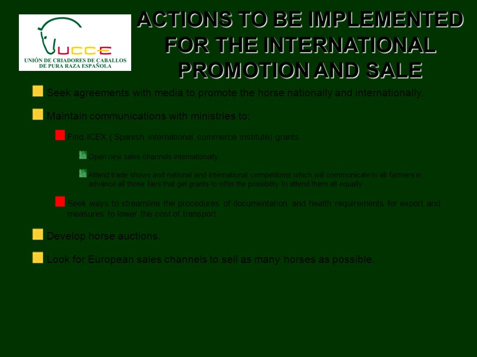 ACTIONS TO BE IMPLEMENTED FOR THE INTERNATIONAL PROMOTION AND SALE