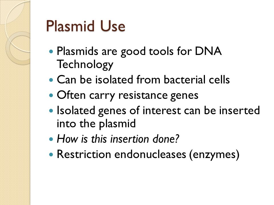 Plasmid Use Plasmids are good tools for DNA Technology