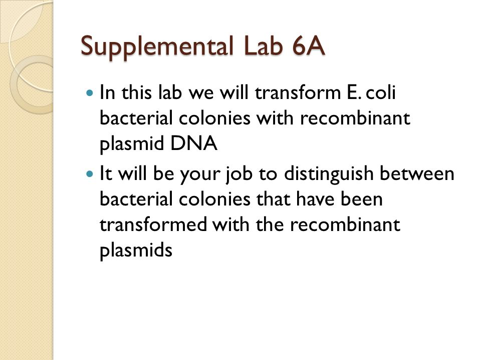 Supplemental Lab 6A In this lab we will transform E. coli bacterial colonies with recombinant plasmid DNA.