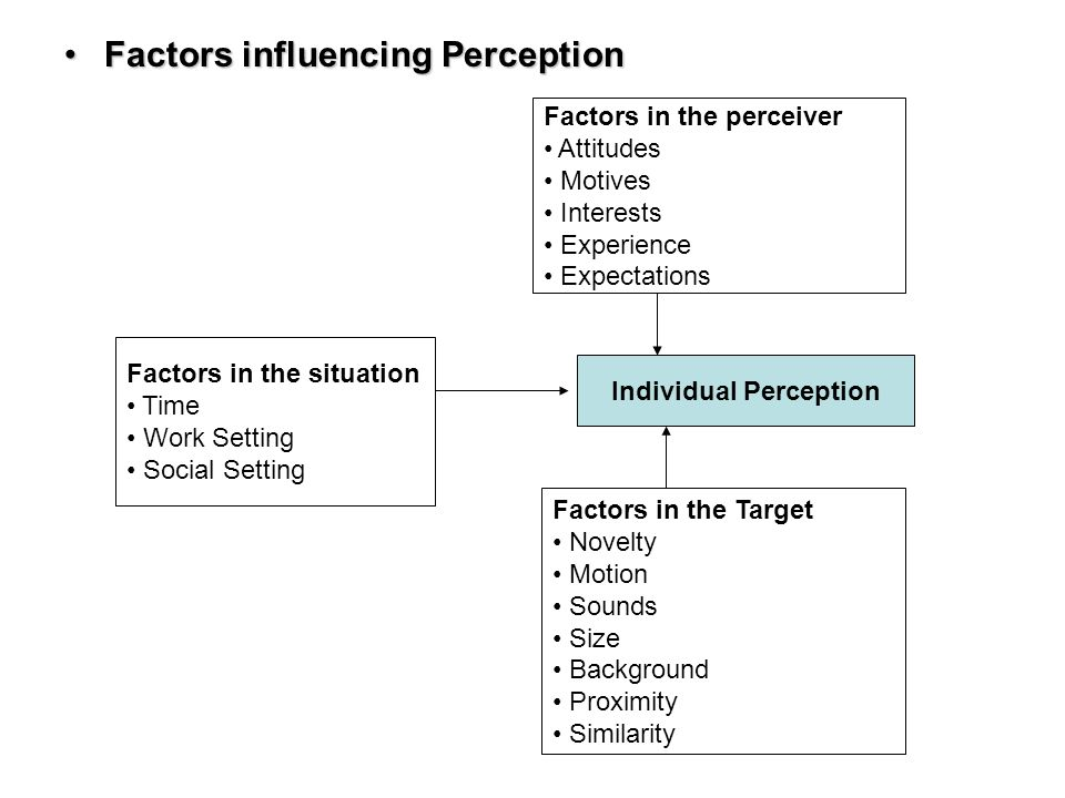 what are the factors that influence perception