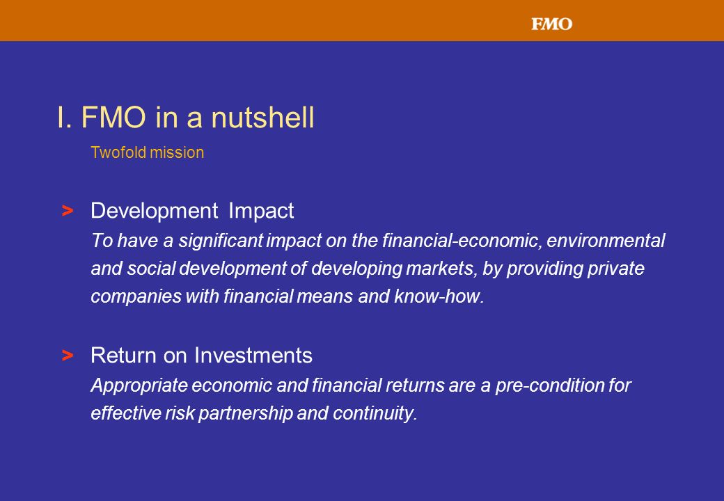 I. FMO in a nutshell Development Impact Return on Investments