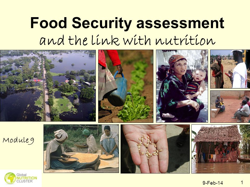 Food Security assessment and the link with nutrition