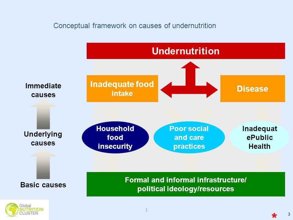 * Undernutrition Inadequate food intake Disease