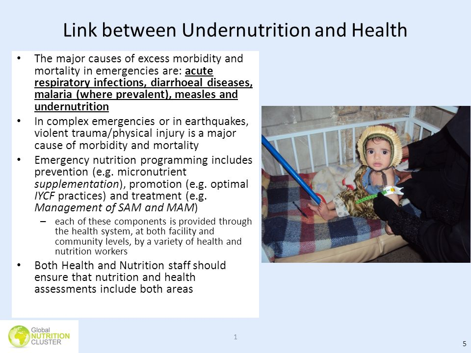Link between Undernutrition and Health