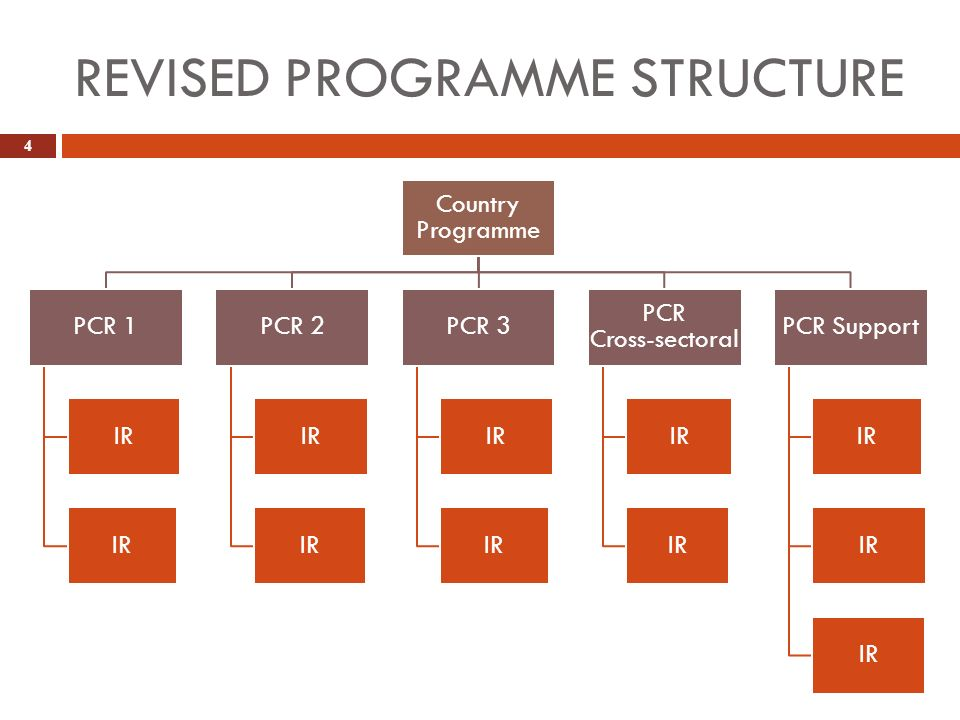 REVISED PROGRAMME STRUCTURE