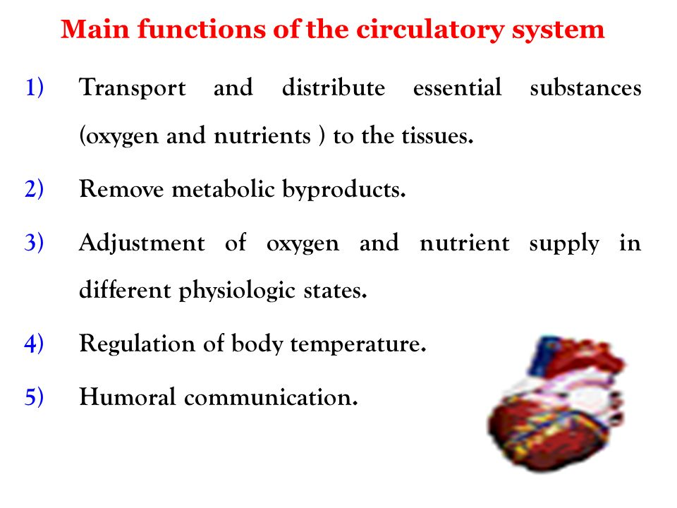 Cardiovascular System Cvs Ppt Video Online Download